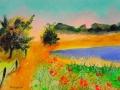 Lac de Devesset  1,    Juillet 2012,  Pastel et Acrylique