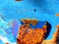 Corrosion 3, Vieille charrue,  La Scie de la Bâtie, 2017